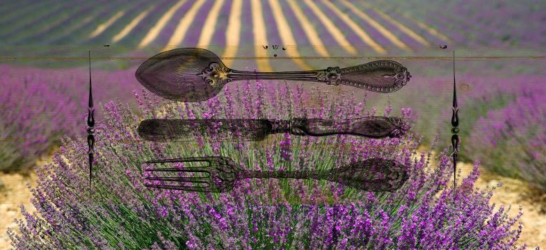 Lavendel Kochrezepte