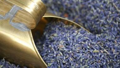 Qualität von Lavendelöl