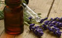 Lavendelöle im Test